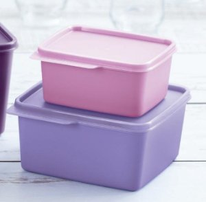 Tupperware Kit Basic Line 1,2 litro + 500 ml Rosa e Lilás
