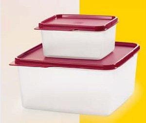 Tupperware Kit Basic Line 500ml + 160ml Transparente Tampa Marsala - 2 Peças
