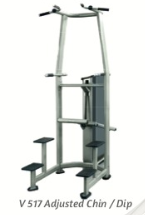 Assisted Chin/Dip (gravitron) 180lb - Wellness