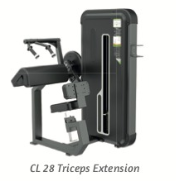 Triceps Extension - Wellness