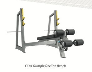 Olympic Decline Bench - Wellness