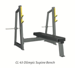 Olimpic Supine Bench - Wellness