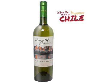 Laguna Andina Varietal Sauvignon blanc  2016