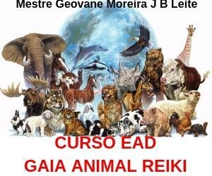 CURSO EAD GAIA ANIMAL REIKI