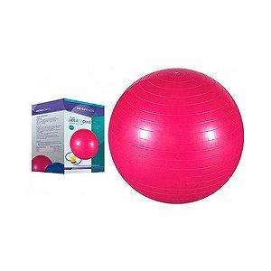 Bola De Ginástica Rosa 65cm Mor Com Inflador Sanfonado