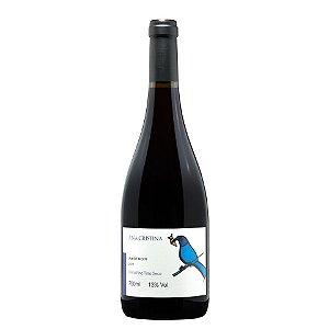 Vinho Ana Cristina Pinot Noir Villaggio Bassetti 750ml