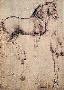 Cartão Study of Horses number 105