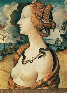 Cartão Piero di Cosimo