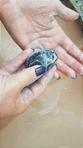 Carvão Ativado - Sabonete Facial
