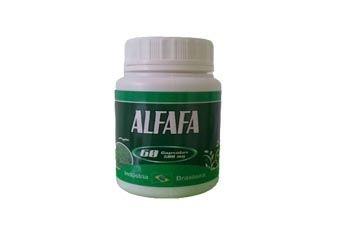 Alfafa - 60 Cáp 500 mg
