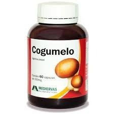 COGUMELO - Agaricus Blazei - 60 Cáp 250 mg