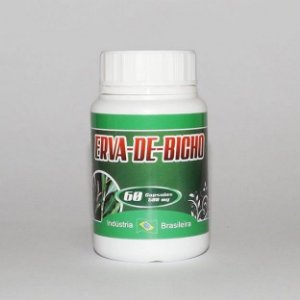 Erva de Bicho - 60 Cáp - 500 mg