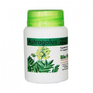 Astragalus - 60 Cáp 300 mg
