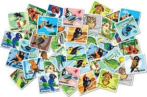 Jogo Memória - Pássaros do Brasil