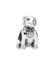 Charm Cachorro Labrador