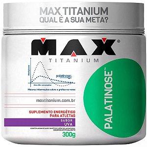Palatinose - Max Titanium - 300g