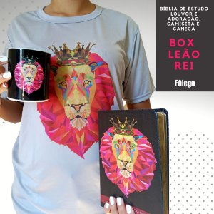 Box Bíblia Leão Rei