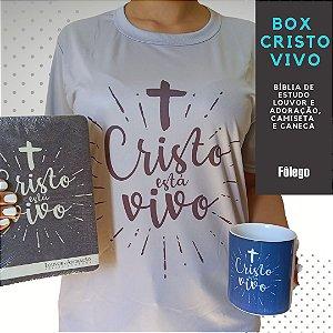 Box Bíblia Cristo Vivo