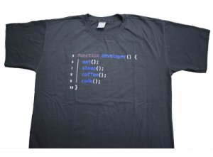 Camiseta Function Developer - Cinza