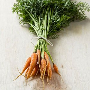 Mini Cenoura
