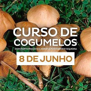 Curso Cogumelos