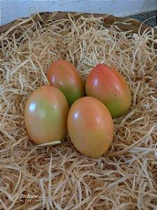 Tomate Italiano Orgânico – 500g