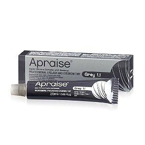 Tintura Apraise Grey 1.1 Sobrancelhas, Cílios e Barba 20 ml