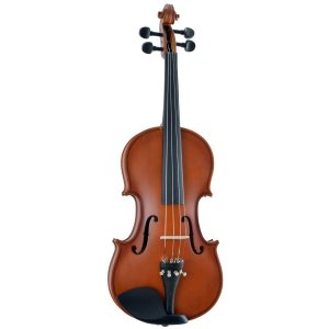 Violino 4/4 Hoyden VHE44N Fosco
