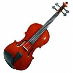 Violino 4/4 Hoyden VHE44V Envernizado