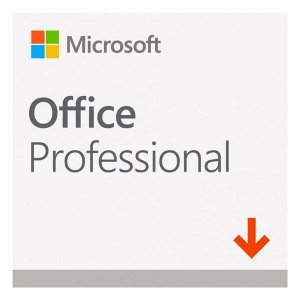 Microsoft Office Professional 2019 ESD (269-17067)