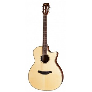 VIOLAO CRAFTER G.AUDITORIO CUTWAY  RG-600CE/N