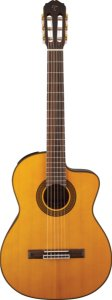VIOLAO TAKAMINE GC5CE N & TP4T