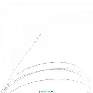 Corda De Nylon Canário GENW1 Para Violão 1ª Corda GIANNINI