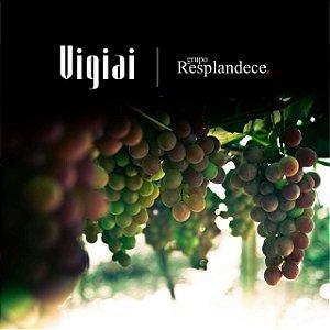 GRUPO RESPLANDECE -  VIGIAI