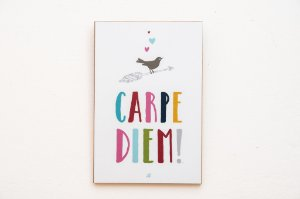 Placa MDF Carpe Diem