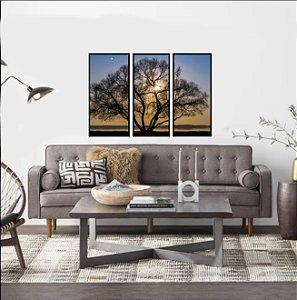 Quadros paisagem árvore raio de sol com moldura preta