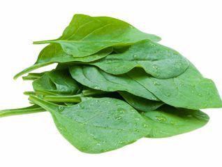 Espinafre (Molho)