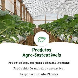 Hortaria Primavera (produtos sustentáveis)