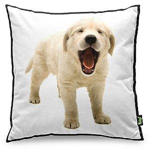Almofada Love Dogs Black Edition - Golden Retriever