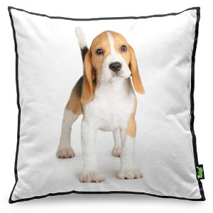 Almofada Love Dogs Black Edition - Beagle