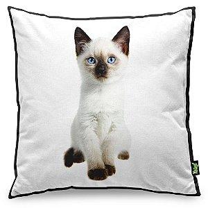 Almofada Love Cats Black Edition - Siamês