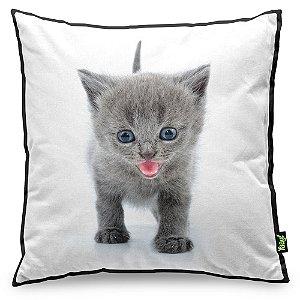 Almofada Love Cats Black Edition - British Grey