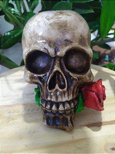 Crânio / Caveira Estilo Barroco - Flor Vermelha