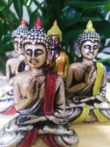 Buda Meditação