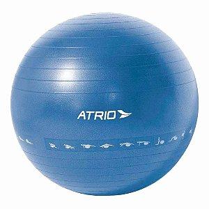 Bola de Ginástica Premium 65CM Diagrama de Exercício Material PVC - Azul