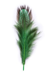 Pena Verde Musgo Faisão - Coleção Pena