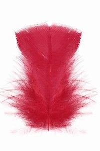 Pena Vermelha II - Coleção Pena