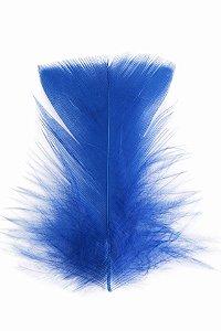 Pena Azul Marinho II - Coleção Pena