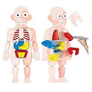 Kit Médico Corpo Humano - Toyng