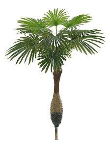 Palmeira Leque Real Toque 1,30 M Artificial